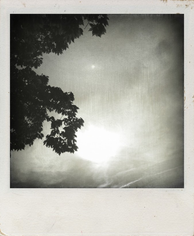 dark sky polaroid